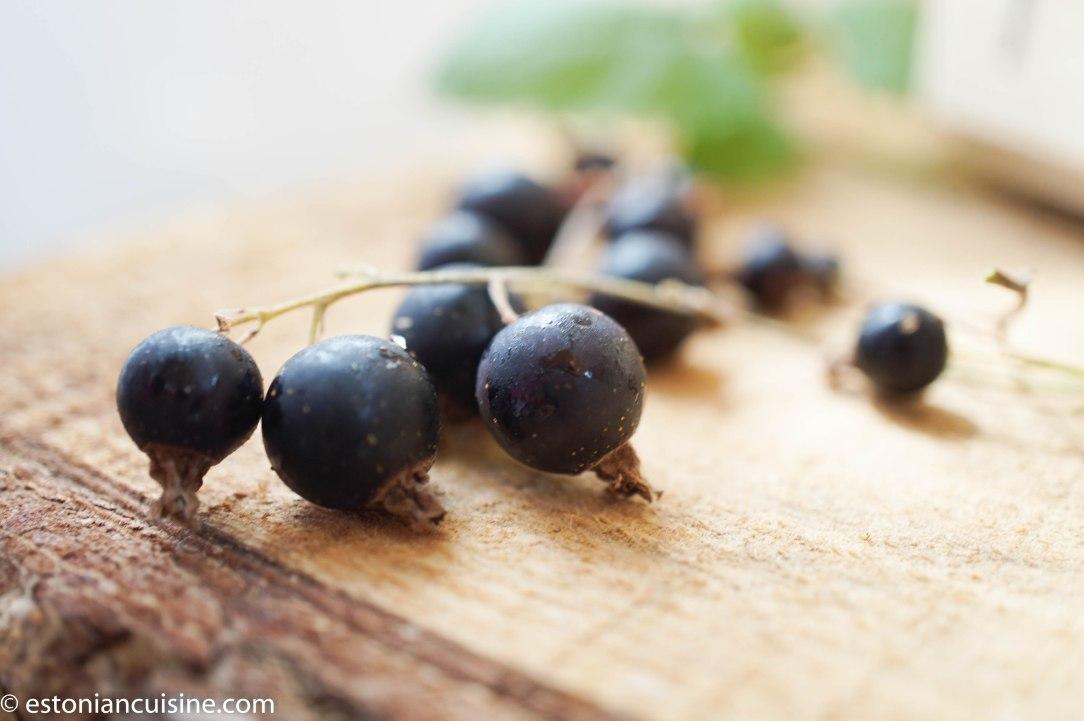 blackcurrants (11)