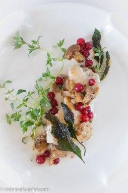 kana seene ja sostraga 1(14)