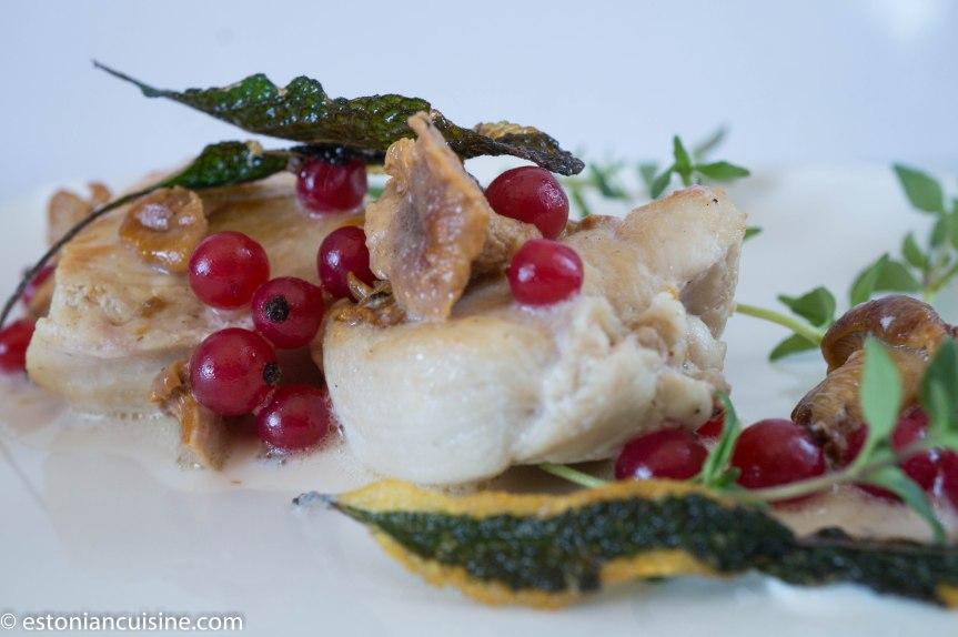 kana seene ja sostraga 1(20)